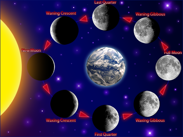 solar system moon phases with earth - photo #33